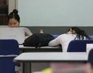 Sinh viên lười đọc sách