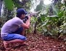 Hà Nội: Người đàn ông tử vong vì trúng đạn của bạn đi săn cùng
