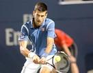 Djokovic lần thứ 11 liên tiếp khiến Stepanek ôm hận