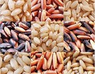 Yêu cầu ngưng hoạt động cơ sở chữa bệnh bằng... gạo lứt, muối mè