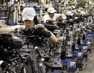 1/5 lao động Nhật Bản có nguy cơ tử vong vì làm việc quá sức
