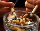 Cận cảnh lá phổi của người hút thuốc lá suốt 20 năm