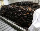 Mỹ bắt giữ lượng lớn vũ khí nghi được chuyển cho phiến quân ở Yemen