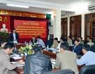 Quảng Ninh: Giảm trên 50% tàu cá cũ nát so với năm 2009