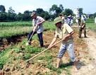 Hải Hà: Cựu chiến binh nêu gương sáng trong xây dựng nông thôn mới