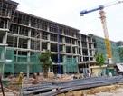 TX Đông Triều: Nỗ lực đẩy nhanh tiến độ xây dựng cơ bản