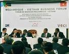 Chủ tịch nước dự Diễn đàn doanh nghiệp Việt Nam - Mozambique