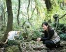"""Vụ 56 người Việt """"biến mất"""" ở Jeju: Chi 15-45 ngàn USD cho môi giới"""