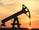 """Giá dầu """"tụt dốc"""", hàng loạt công ty dầu khí Anh giải thể"""