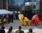 Khai mạc Festival Tết Việt Nam Bính Thân 2016 tại Grenoble