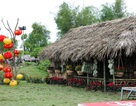 Lí do không thể bỏ qua chợ Tết trong thung lũng hoa Hà Nội