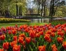 Khám phá các kinh đô hoa xuân bậc nhất Âu châu