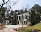"""Khu resort bề thế trong Vườn Quốc gia Ba Vì một ngày sau """"lệnh"""" đình chỉ"""