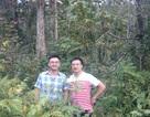 Những người đánh thức giá trị cây thuốc Việt