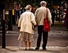 Những bức ảnh xúc động về tình yêu ở tuổi xế chiều