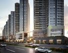 Quyền sở hữu chỗ đậu xe: Thêm yếu tố hút khách mua căn hộ