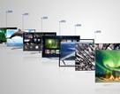 TV Samsung 10 năm dẫn đầu thị trường toàn cầu