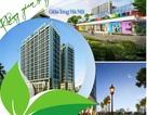 Nhu cầu về một môi trường sống xanh đang dần trở thành một xu hướng