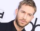 Đàn ông phải trả nhiều tiền hơn phụ nữ khi nghe nhạc của Calvin Harris