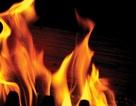 Bằng chứng phát hiện ra lửa xuất hiện sớm nhất ở châu Âu