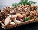 Nấm chứa nhiều dưỡng chất có lợi cho sức khỏe