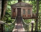 Những ngôi nhà trên cây độc đáo nhất thế giới