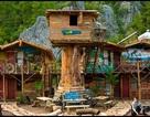 Những ngôi nhà trên cây độc đáo nhất thế giới (p2)