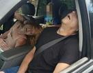 Tấm ảnh bố mẹ phê thuốc trong xe có con ngồi ghế sau gây sốc cộng đồng mạng