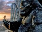 Bí mật của phim King Kong
