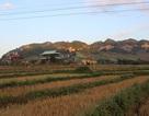 Bí ẩn kho báu của người Thái ở vùng đất cổ Mường Sang