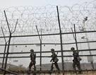 Yonhap: Đại tá tình báo Triều Tiên đào tẩu sang Hàn Quốc