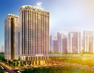 Hiếm có khó tìm chung cư sinh thái ngay trung tâm Hà Nội