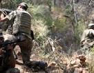 Thổ Nhĩ Kỳ ráo riết lùng nhóm biệt kích âm mưu ám sát tổng thống
