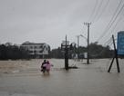 Công điện của Bộ Trưởng Giáo dục về phòng chống mưa lũ khu vực miền Trung