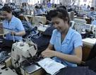 Lao động nữ ở nước ngoài mang thai sẽ bị trục xuất