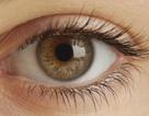 Bí ẩn về điểm chung giữa cấu trúc mắt người và những ngôi mộ Ai Cập
