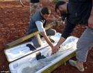 Máy bay Syria lại rơi khi phiến quân nhận tên lửa mới