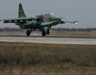 Nga rút toàn bộ máy bay chiến đấu Su-25 khỏi Syria