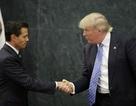 Bộ trưởng Mexico bị sa thải vì mời Donald Trump viếng thăm