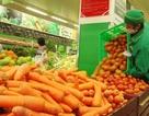 Kiểm tra 263 mặt hàng rau củ quả tại Metro Thăng Long
