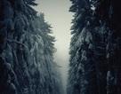 Mùa đông lạnh lẽo nhưng đẹp mê hoặc trên khắp thế giới