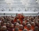 Du khách Hà Lan bị bắt giam tại Myanmar vì hành vi lăng mạ tôn giáo