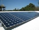 Ấn Độ ưu tiên phát triển năng lượng tái tạo