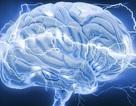 Các thói quen hàng ngày sẽ giúp cho bộ não của bạn vui vẻ hơn