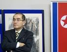 Nhà ngoại giao cấp cao đào tẩu tiết lộ chương trình hạt nhân của Triều Tiên
