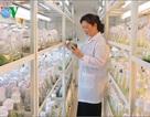 Khi nhà khoa học nữ nghỉ hưu, họ mong muốn gì?
