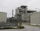 Phó Thủ tướng Vương Đình Huệ thị sát 2 nhà máy thua lỗ của ngành Công Thương