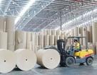 Thủ tướng yêu cầu kiểm tra  môi trường Nhà máy giấy Lee&Man