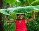 Những bức ảnh về Việt Nam nổi bật của nhiếp ảnh gia Pháp năm 2015