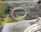 Khoảnh khắc đầu tiên và cuối cùng của người mẹ ung thư